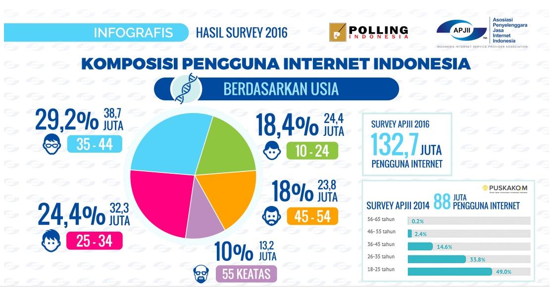 Komposisi Pengguna Internet di Indonesia 2016